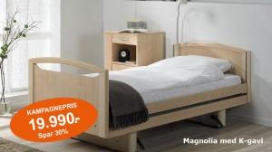 Magnolieseng-kampagnepris